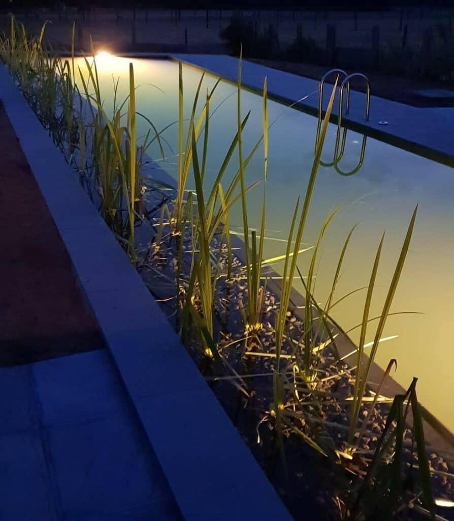 Zwemvijver avond